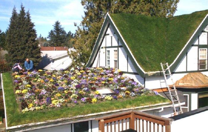 Grass Roof Installations And Benefits How To Build A House