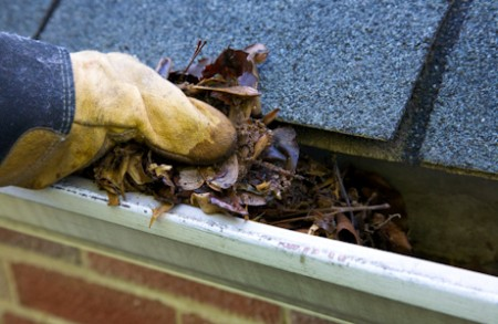 Cleaning Your Home Gutters