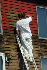 Painting the House Siding