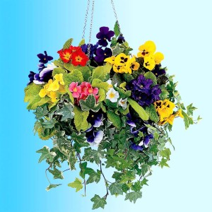 Multicoloured Flower Hanging Basket