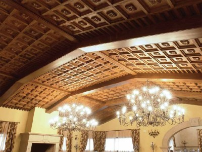 Beautiful and Luxury Ceiling