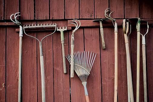 how to keep tools from rusting in shed