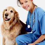 When Do You Need to Take Your Pet to the Veterinarian?