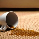 Useful Tips to Remove Carpet Stains