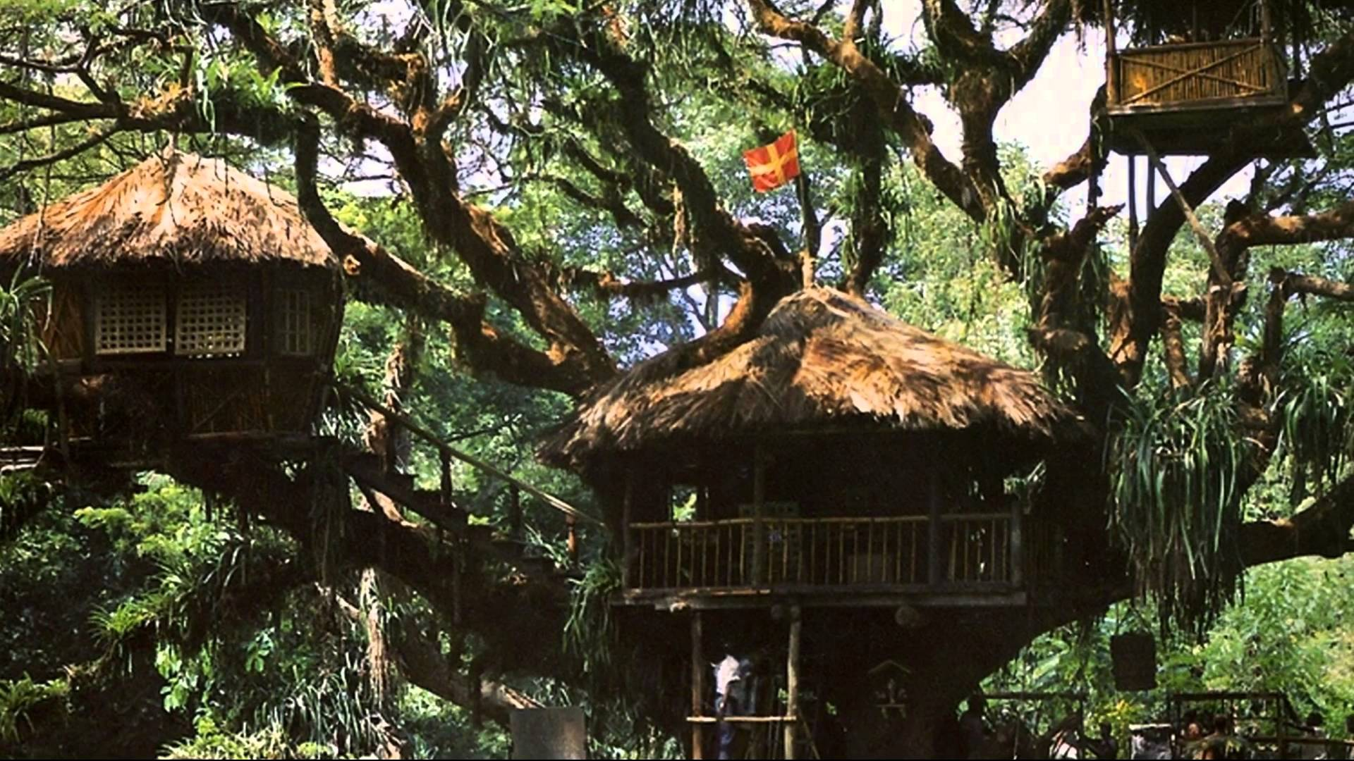 how to build your own tree house